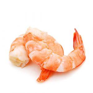 shrimp-