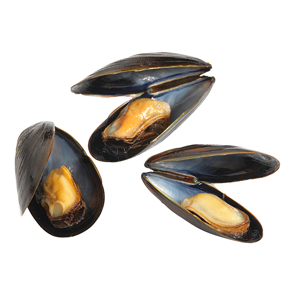 Canadian Mussels