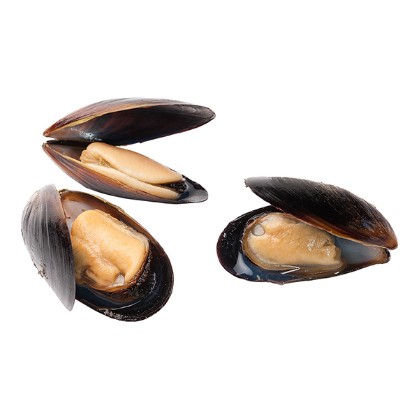 Chilean Mussels