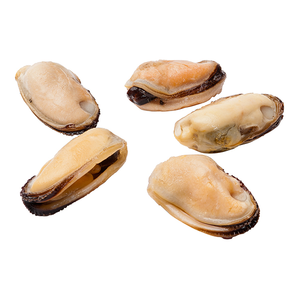 Mussel Meat Product