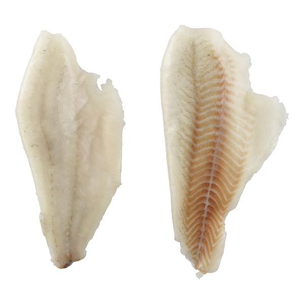 seabass product