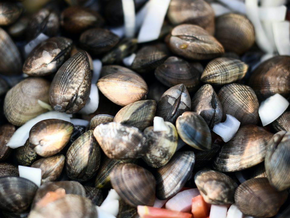 The Ultimate Guide to Cooking Shellfish